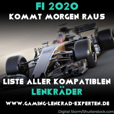 F1 2020 – Die besten unterstützten Lenkräder für PS4, Xbox One, & PC